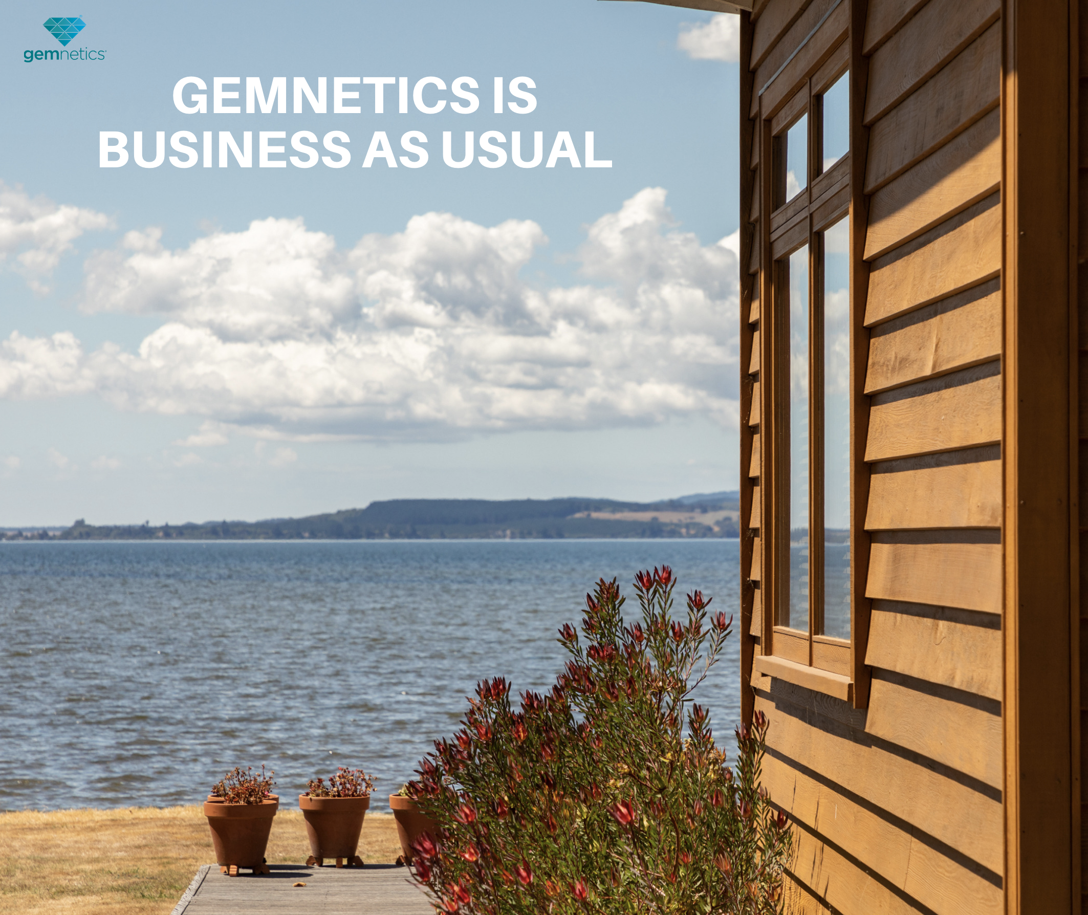 For Gemnetics it's business as usual, and Gemview continues without interruption